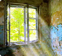 Lost Place - Fenster